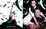 axn-chinese-copycat-movie-posters-2