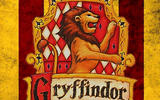 axn-lost-inlanders-sorted-into-hogwarts-houses-1