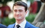 axn-potter-now-2
